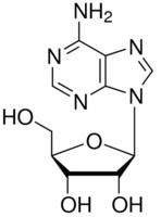 Adenosine CAS 58-61-7