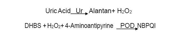 Assay Principle 5 - Uric Acid CAS 69-93-2