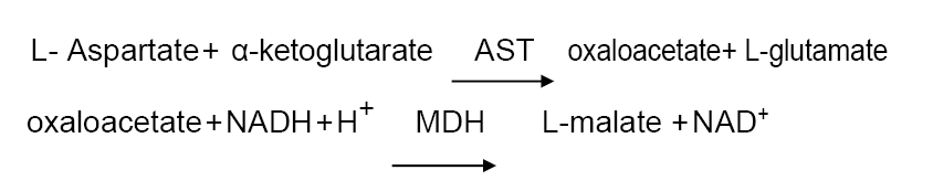 Assay Principle 8 - Aspartate Aminotransferase CAS 9000-97-9