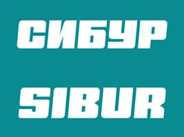 Sibur - Our Customers