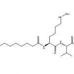 Pal-K(Boc)VK(Boc)-OH CAS PNA-2732