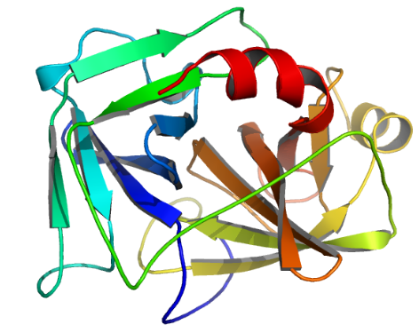 Recombinant Enterokinase EC 3.4.21.9 CAS 9017-74-8