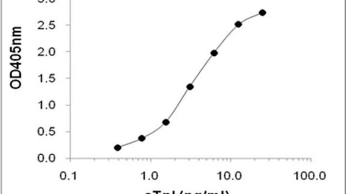 Anti-cTnI (Troponin I CAS 7108-40-8) Antibody