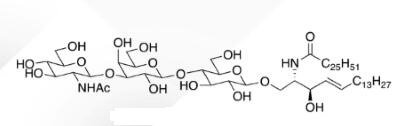 WUNA 0007 1 - GalNACB1,3Gala1,4Galb1,4Glc Ceramide CAS WUNA-0014