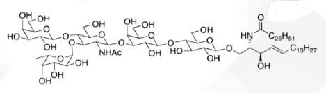WUNA 0009 1 - GalNACB1,3Gala1,4Galb1,4Glc Ceramide CAS WUNA-0014