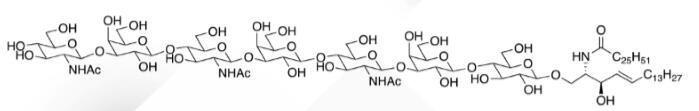 WUNA 0010 1 - GalNACB1,3Gala1,4Galb1,4Glc Ceramide CAS WUNA-0014