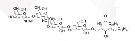 WUNA 0015 1 - GalNACB1,3Gala1,4Galb1,4Glc Ceramide CAS WUNA-0014