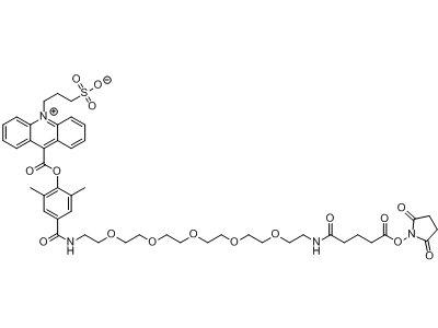 NSP-DMAE-HEG-Glu-NHS CAS 1253933-74-2