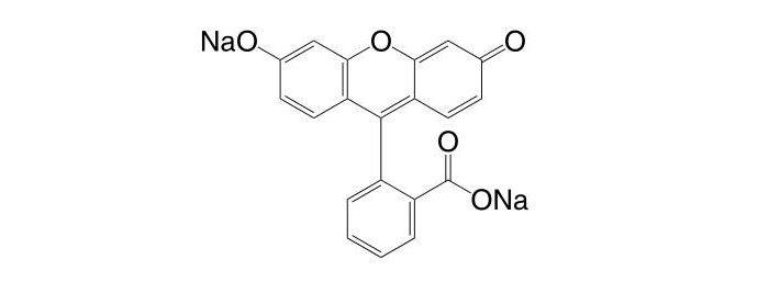 Uranine CAS 518-47-8