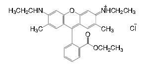 Rhodamine 6G CAS 989-38-8