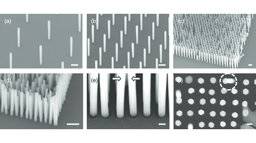 Polyberg Develops and Scales up Silver Nanowire Agnw - About Watson