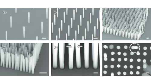 Silver Nanowire Agnw - Watson Develops and Scales up Silver Nanowire (Agnw)