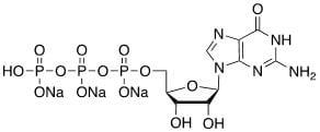 Structure of Guanosine 5 triphosphate GTP Trisodium salt CAS 36051 31 7 - Methyl 4,5-diaMino-3-fluoro-2-(phenylaMino)benzoate CAS 606144-42-7