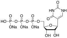 Structure of Uridine 5 triphosphate Sodium Salt CAS 1175 34 4 - Methyl 4,5-diaMino-3-fluoro-2-(phenylaMino)benzoate CAS 606144-42-7