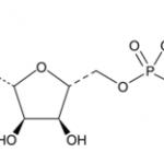 Structure of alphabeta methylene Adenosine 5 triphosphate sodium salt CAS 1343364 54 4 150x150 - 2-Isocyanatoethyl 2,6-diisocyanatocaproate CAS 69878-18-8